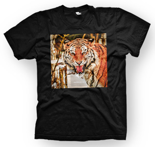 enough shirts,Tiger-Scream, T-Shirt, Animal Design, Tiere